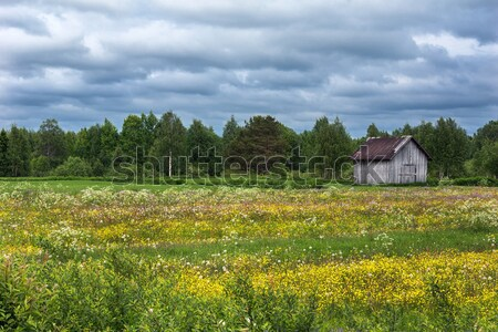 Rural scene with slanted grey barn in Finnish Lapland. Stock photo © Klodien