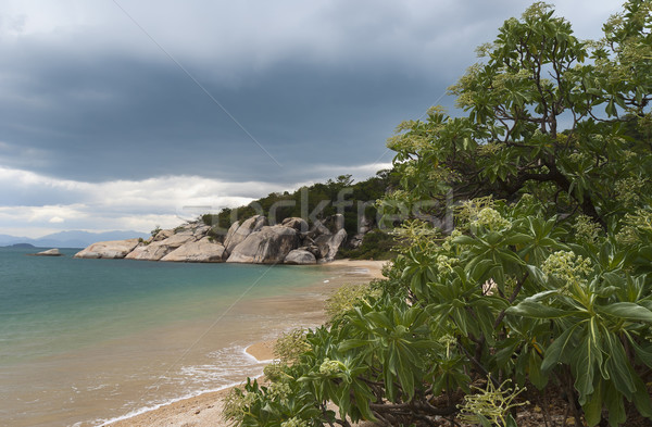 Storms gather over a tropical paradise beach. Stock photo © Klodien
