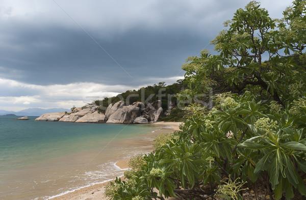 Trópusi édenkert tengerpart Vietnam Stock fotó © Klodien