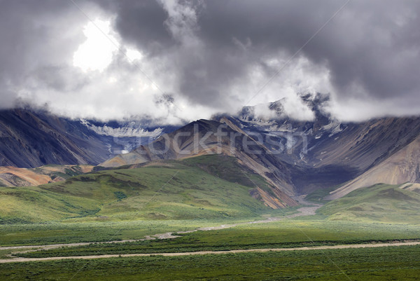 Wide wild scenery with two glaciers at Denali - Alaska. Stock photo © Klodien