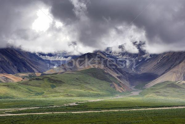 Széles vad díszlet kettő Alaszka sötétszürke Stock fotó © Klodien