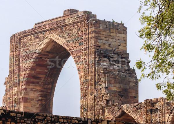 Parrots on ancient Arabic gateway at Qut'b Minar in Delhi. Stock photo © Klodien