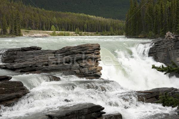 Eau roches vert forêt fond montagne Photo stock © Klodien