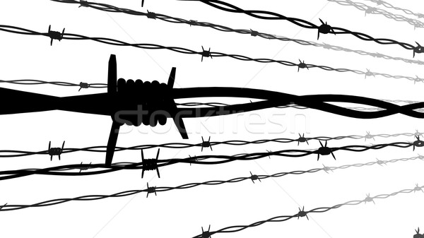 Silhouette of Barbed wire. Stock photo © klss