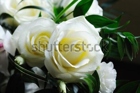 Gelinler beyaz güller Stok fotoğraf © KMWPhotography