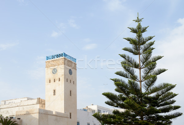 Marrocos relógio torre árvore edifício paisagem Foto stock © KMWPhotography