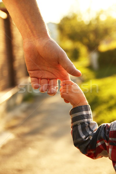 parent holds the hand of a small child Stock photo © koca777
