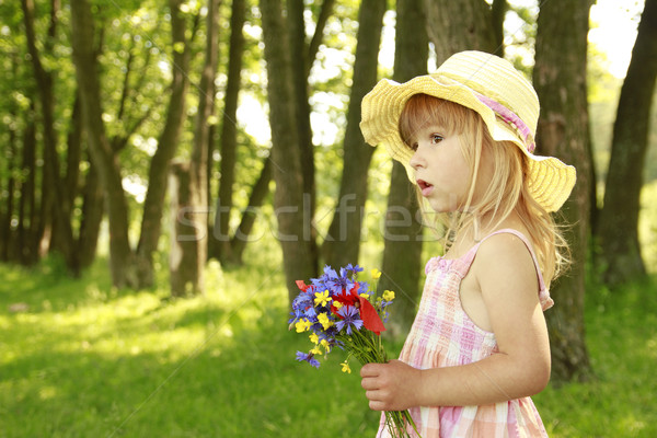 Hermosa nina ramo flores naturaleza familia Foto stock © koca777