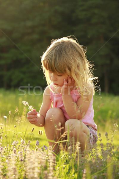 beautiful little girl playing in nature Stock photo © koca777