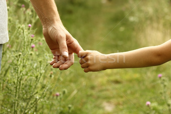 the parent holds the hand of a child Stock photo © koca777