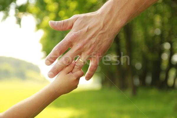 Main parent enfant nature bébé amour Photo stock © koca777