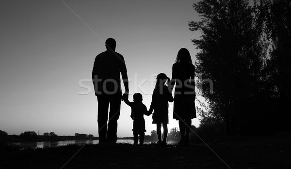 Silhouet gelukkig gezin kinderen familie gelukkig natuur Stockfoto © koca777
