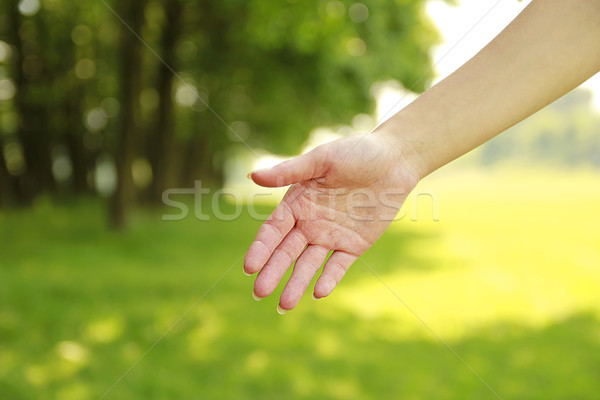 female disclosed gentle hands on nature Stock photo © koca777