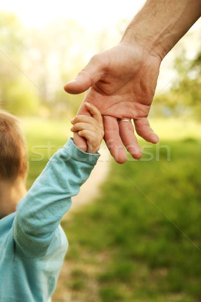 Parent main faible enfant famille vert Photo stock © koca777