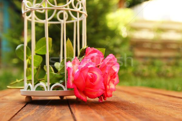 装飾的な ケージ 花 結婚式 愛 自然 ストックフォト © koca777
