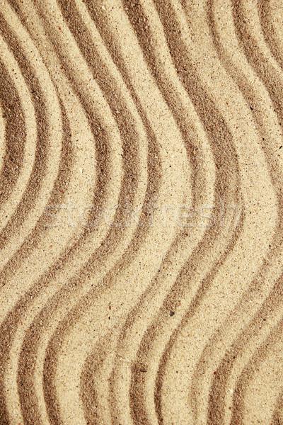 Stok fotoğraf: Kum · kabukları · plaj · kumu · plaj · doğa · deniz