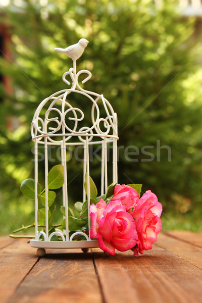 decorative cage with flowers for wedding ceremony Stock photo © koca777