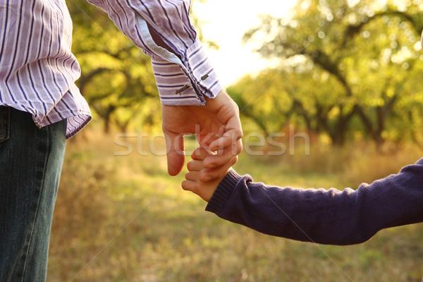 Pai ou mãe mão pequeno criança família verde Foto stock © koca777