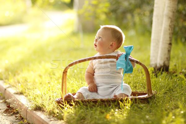мало мальчика корзины природы семьи трава Сток-фото © koca777