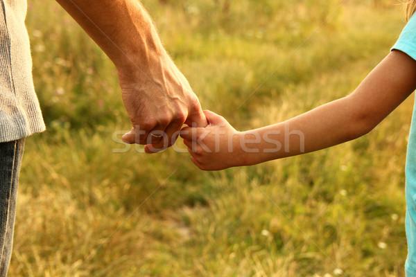Szülő kéz gyermek kicsi család zöld Stock fotó © koca777