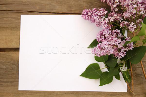 paper with purple flowers Stock photo © koca777