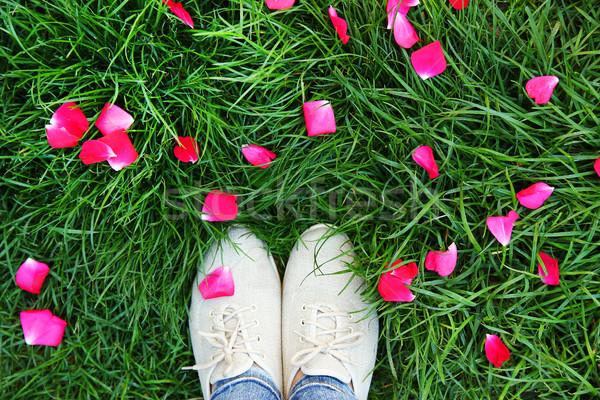 Jambes chaussures herbe verte fille printemps herbe Photo stock © koca777