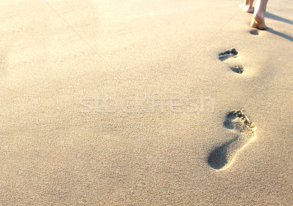 human footprints in the sand on the beach Stock photo © koca777