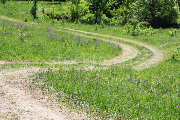 winding road in the nature strip Stock photo © koca777