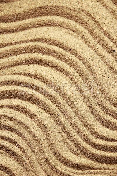 Stockfoto: Zand · schelpen · strandzand · strand · natuur · zee