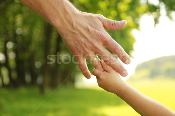 hand of parent and child in nature Stock photo © koca777