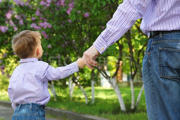 Szülő kéz kicsi gyermek család zöld Stock fotó © koca777