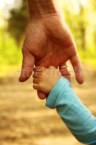 Ebeveyn el küçük çocuk güvenlik yeşil Stok fotoğraf © koca777