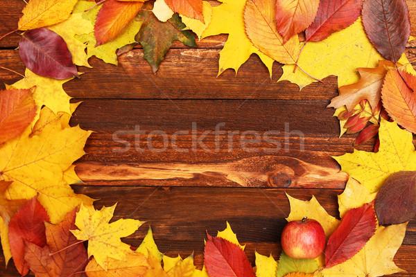 осень кадр листьев бумаги природы Сток-фото © koca777