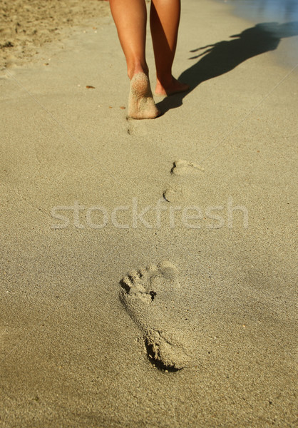 footprints in the sand on the beach Stock photo © koca777