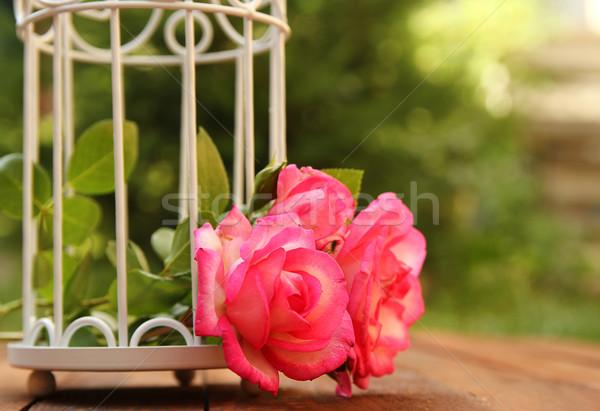 Dekoratív ketrec virágok esküvői ceremónia szeretet természet Stock fotó © koca777