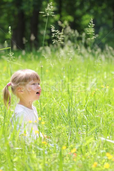 beautiful little girl on nature Stock photo © koca777