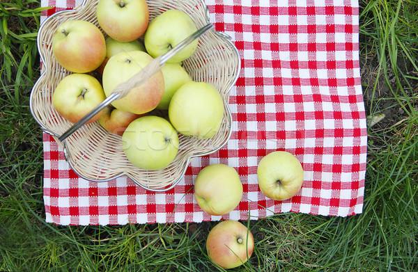 Zielone jabłka koszyka trawy tekstury lata Zdjęcia stock © koca777