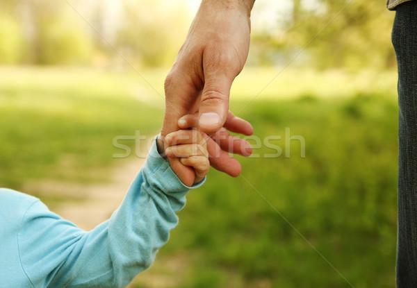 Szülő kéz kicsi gyermek biztonság zöld Stock fotó © koca777
