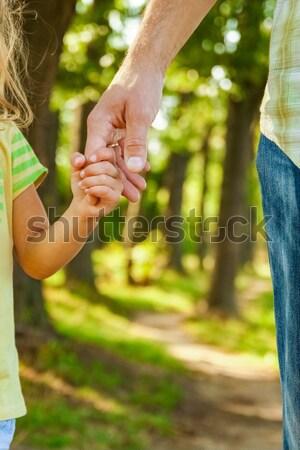 Padres mano pequeño nino familia verde Foto stock © koca777