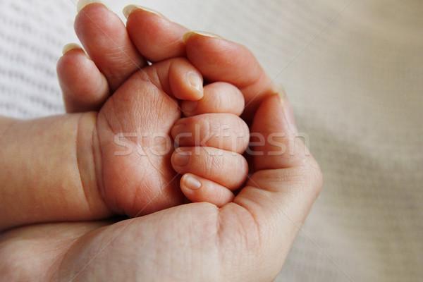Parent main faible enfant famille sécurité Photo stock © koca777