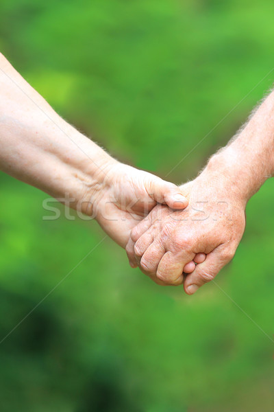 Dois mãos natureza idoso casal amor Foto stock © koca777