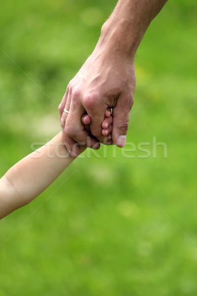 Main parent enfant nature mains bébé Photo stock © koca777