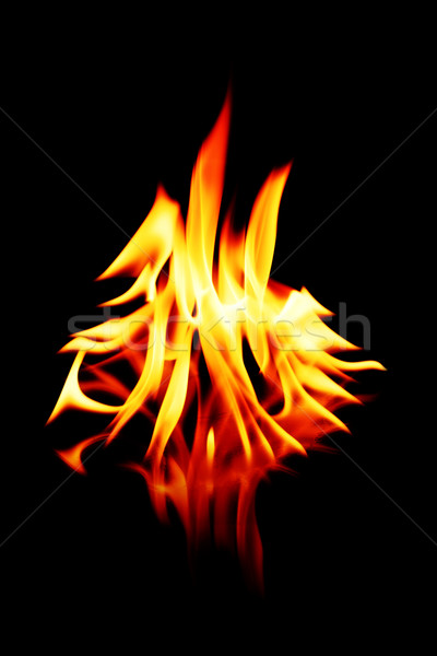 flames Stock photo © kokimk