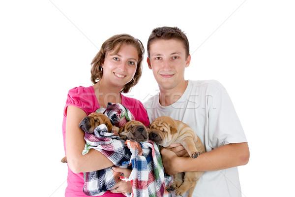 Casal três bebê cães um Foto stock © kokimk