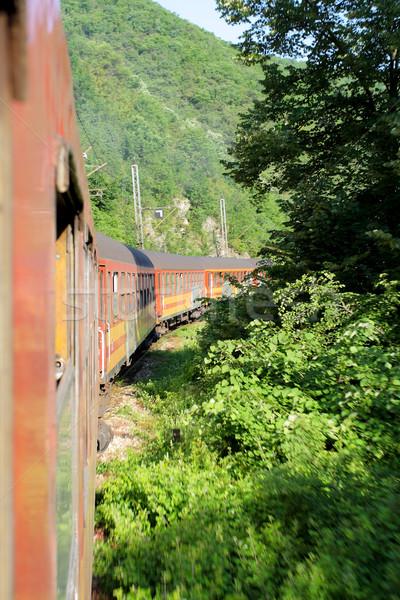 Görmek hareketli tren orman doğa seyahat Stok fotoğraf © kokimk