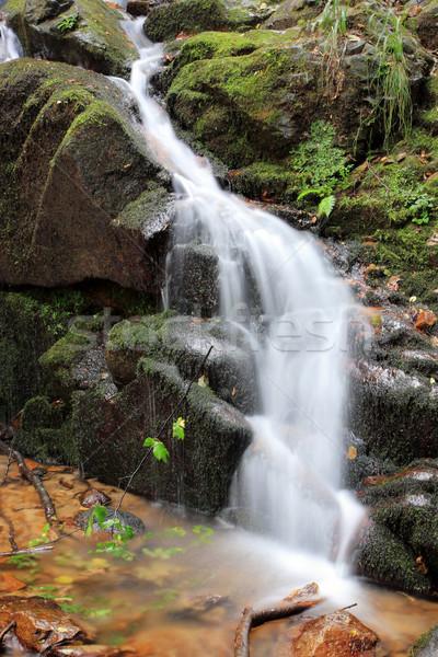 çağlayan bölge Makedonya su bahar orman Stok fotoğraf © kokimk