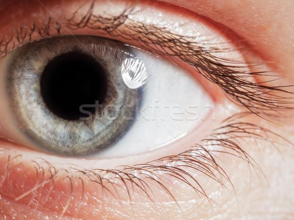 Emberi szem zárt terjedelem hosszú szempilla Stock fotó © koldunov