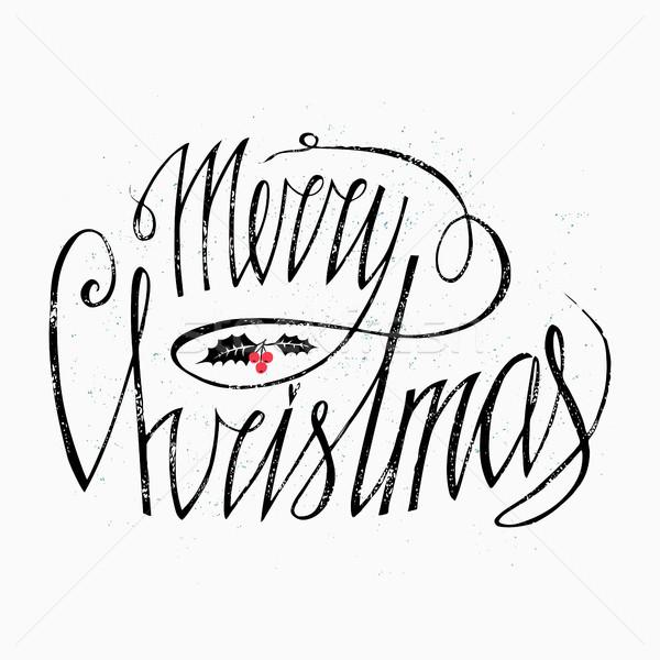 веселый Рождества дизайна омела белая красный Ягоды Сток-фото © kollibri