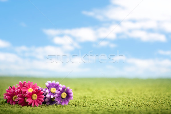 Photo-illustration of flowers on meadow Stock photo © konradbak