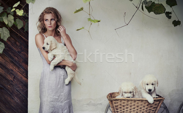 Stock photo: Young beauty and puppies in basket